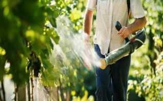 Сера для обработки винограда. Современные препараты для опрыскивания