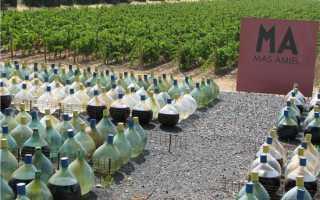 Западный Лангедок: описание и особенности вин