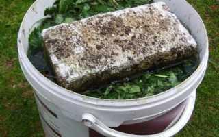 Зеленое удобрение из травы (сорняков) для подкормок винограда