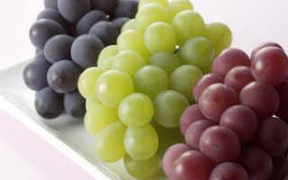 Выбор сорта винограда. Важные качества и характеристики сортов
