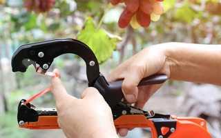 Степлер для подвязки винограда и других растений Tapener