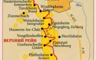 Эльзас: описание и особенности вин