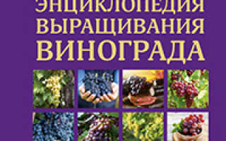 Удобрения для винограда. Справочник виноградаря.