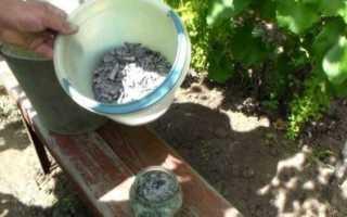 Применение минеральных удобрений на винограднике
