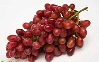 Виноград Кримсон сидлис (кишмиш) – описание и фото сорта