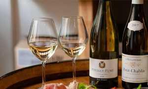 Шинон и Бургей: описание и особенности вин