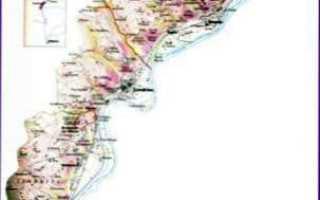 Кот-Роти: описание и особенности вин