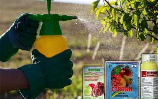 Теппеки – инсектицид. Применение на винограде