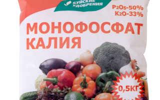 Применение монофосфата калия для подкормок винограда